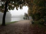 nebliger Herbsttag